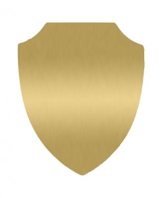 Табличка Щит золотая, 18х22 см